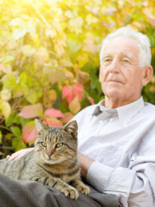 Elder Care Delray Beach FL - Elder Care: Reasons Why Cats Are The Purrfect Companions For Seniors